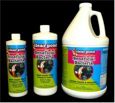 Clear Pond Liquid BSL Formula Beneficial Bacteria