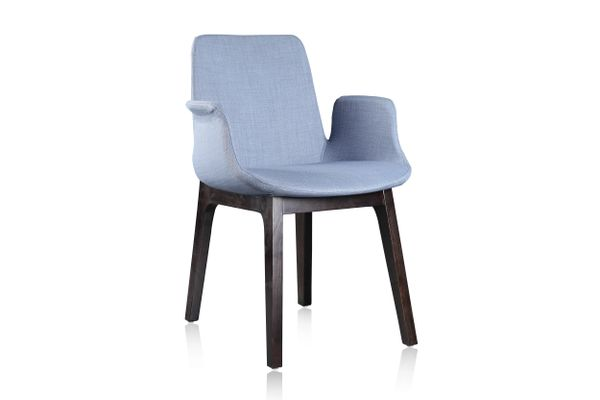 Dining Arm Chair MDC0173