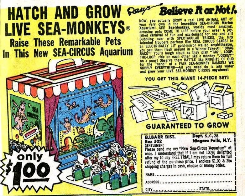Sea Monkey ad