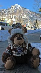 Cozy Bear with Crested Butte sweater