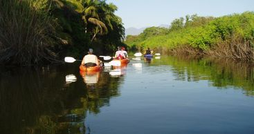 Experience a great paddle on stable and comfortable kayaks, along the Boca estuary, learning about t
