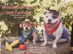 Pickles and Friends 2020 calendar