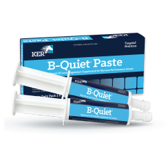 B-QUIET PASTE TWIN PACK