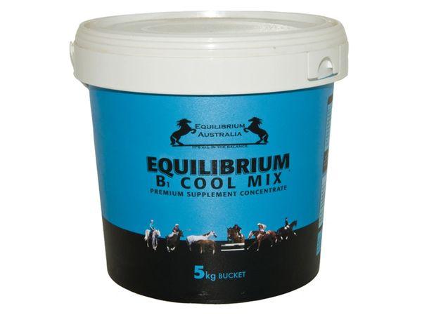 EQUILIBRIUM B1 COOL MIX