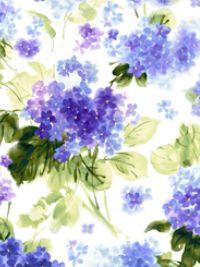 QT Hydrangea Blossom 1649-27529-Z