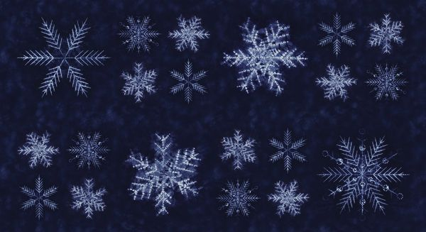 Moda Shimo dark blue big snowflakes