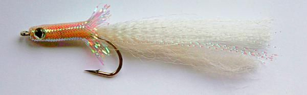 Desolution Baitfish