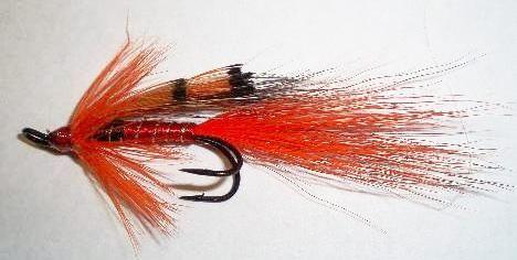 Ally's Shrimp Salmon Fly double hook