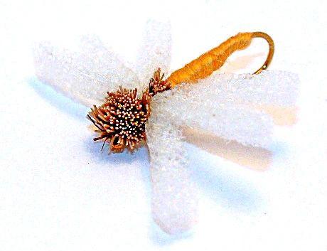 Butterfly 12 pcs. set size
