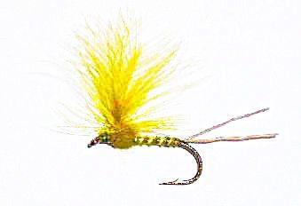 Yellow Mayfly 12 pcs. set size