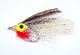 Big Eye Baitfish