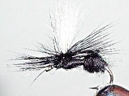Ant parachute