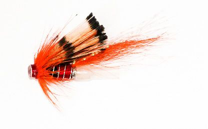 Ally's Shrimp - Plastic Tube Fly