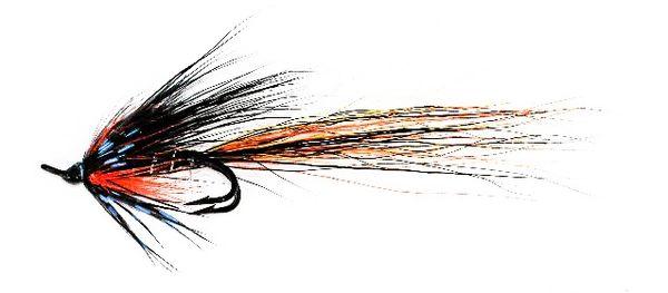 Ally's Tunnel Shrimp Salmon Fly double hook