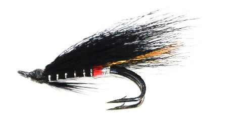 Executioner Salmon Fly double hook