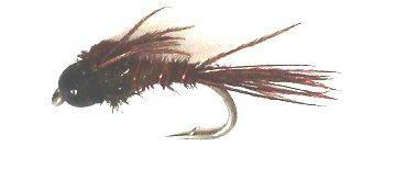 BH Pheasant Tail with black tungsten head