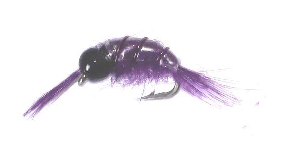 Scud purple (tungsten head)