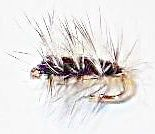 Wolly Worm black