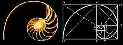 The significance of the spiral is prevalent throughout history and nature: found in galaxies, shell