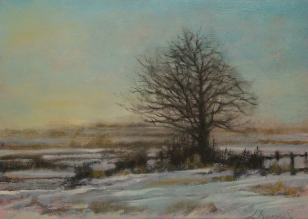 Winter Study Harlestone 2015