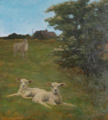 Spring Lambs, Upper Harlestone