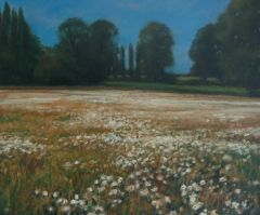 Wild Flowers, Nether Heyford I