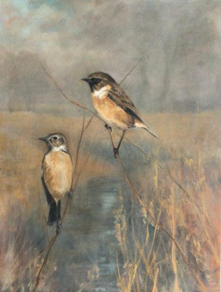 Pair of Stonechats