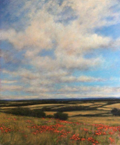 Poppies Near Brixworth 2