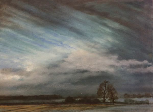 Sky Study above Nobottle Woods
