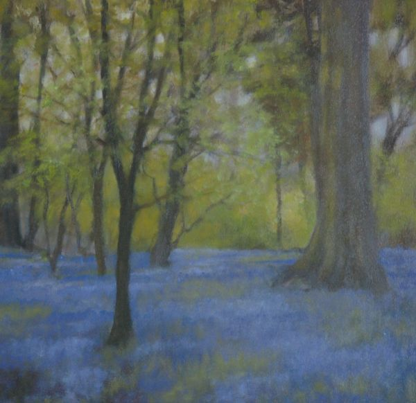 Bluebells, Nobottle Wood Print