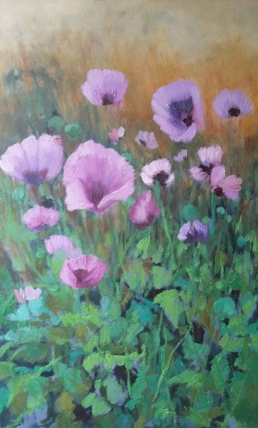 Poppies in the Garden