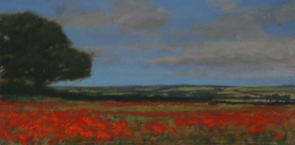 SOLD Poppies near Brixworth