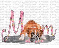Sublimation Transfer - Pets