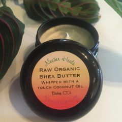 Healing Babies Cream - Raw Ivory Shea butter whipped with option of lavender or tea tree oil 2 oz.