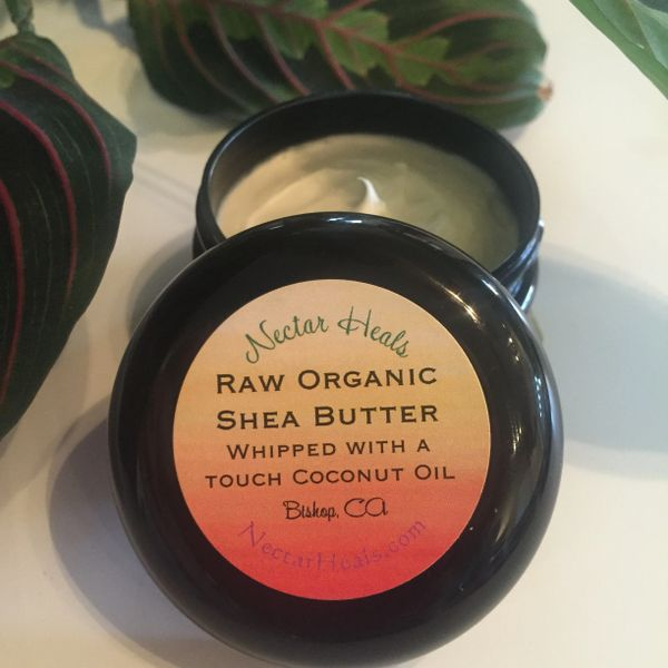 Healing Raw Shea Nut Butter Cream - Ivory Shea butter whipped with option of lavender or tea tree oil 2 oz.
