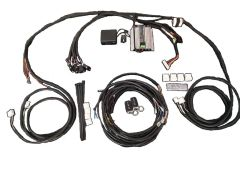 RAMS Dealer Keyless Entry with Harness