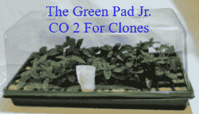 The Green Pad Jr