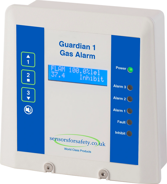 S4S Guardian® 1 Single Channel Gas Detection System - Boiler Room