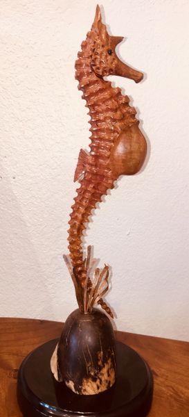Mr Sassy Sappodilla Sea Horse
