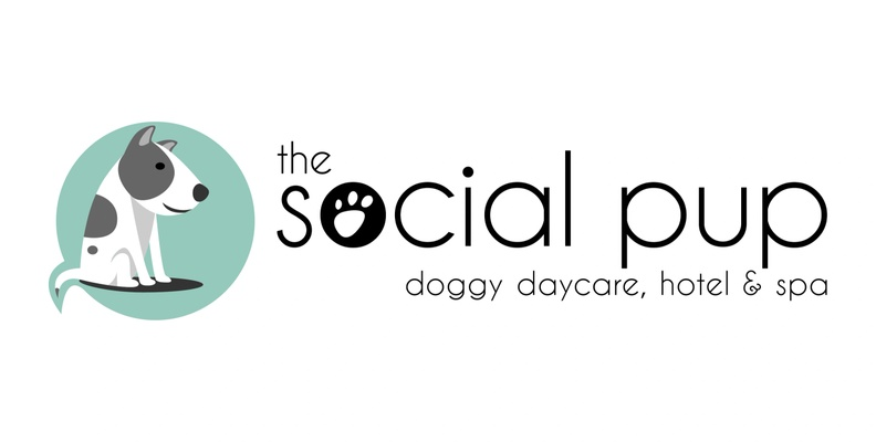 The Social Pup Dog Daycare, Hotel & Spa