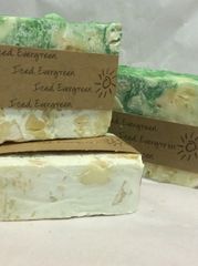 Handmade Soap - Iced Evergreen