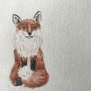 fox in watercolour