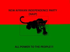 New Afrikan Independence Party (NAIP)