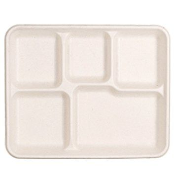 Compostable 5 Compartment Tray - GENHF105 - 500/CS