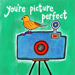 You're Picture Perfect