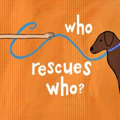 Who Rescues Who?