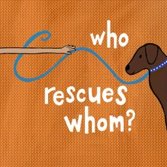 Who Rescues Whom?