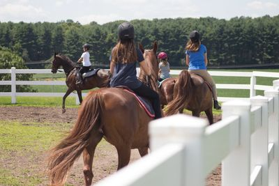 Group horse riding lessons.