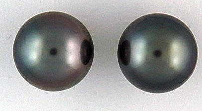 Ladies Black Pearl Stud Earrings