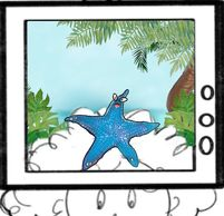 Sea star blue starfish, tv, arts and entertainment, tv, television, hawai, tropical, surfing, surfer